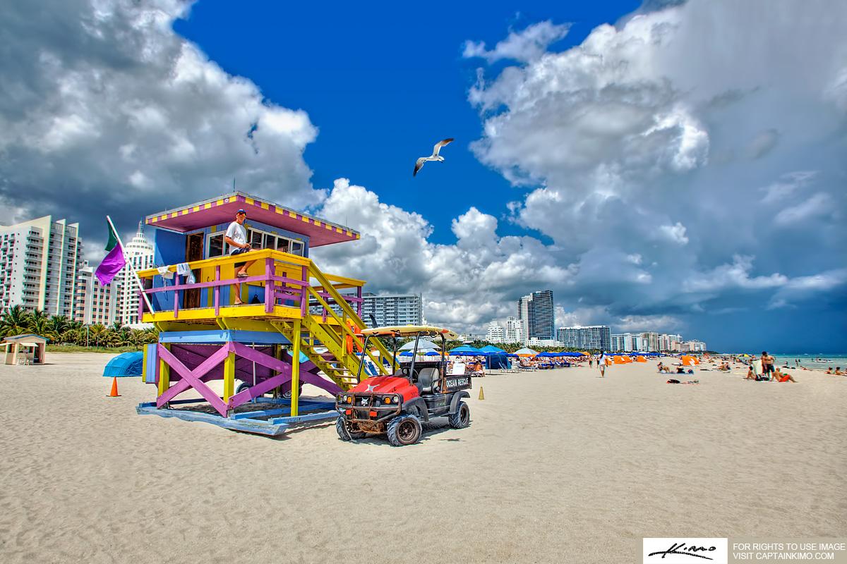 The Seagull Miami Beach